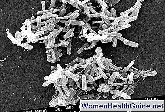 Colite pseudomembranosa (infezione da Clostridium difficile)