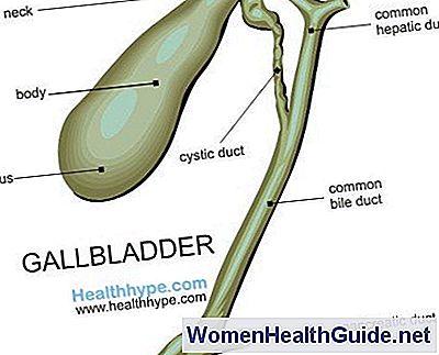 Gallenblase Lage, Anatomie, Teile, Funktion, Bilder ...